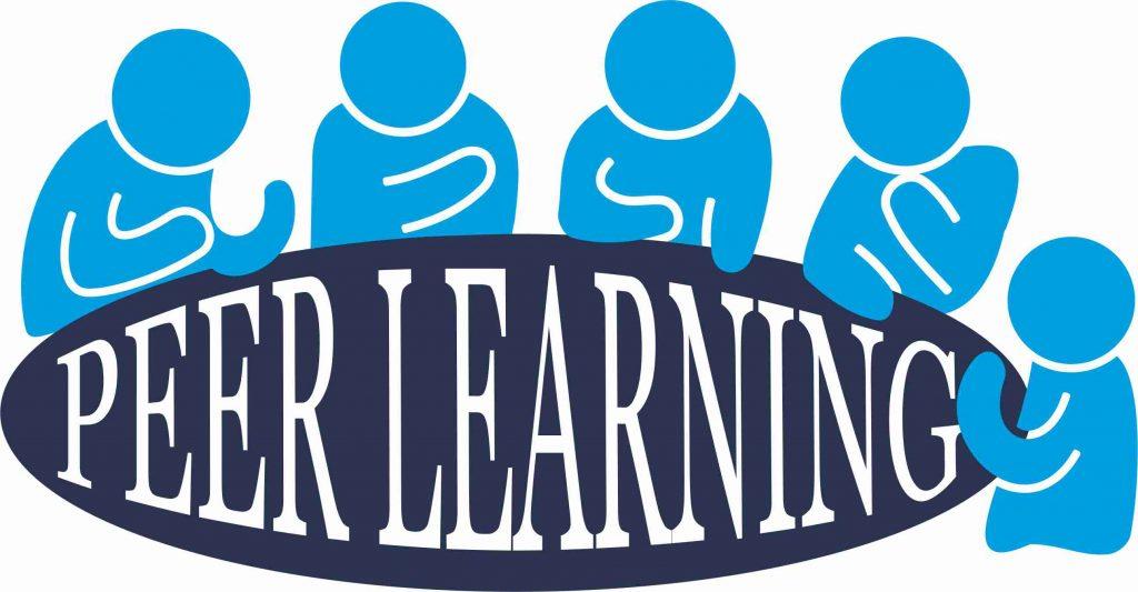 UoS Business School Peer Leader Logo (Large) July 2017
